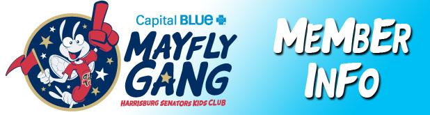 Mayfly Gang!