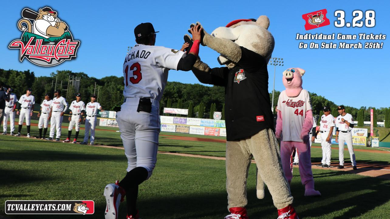 ValleyCats reveal first round of exciting 2019 promotions!