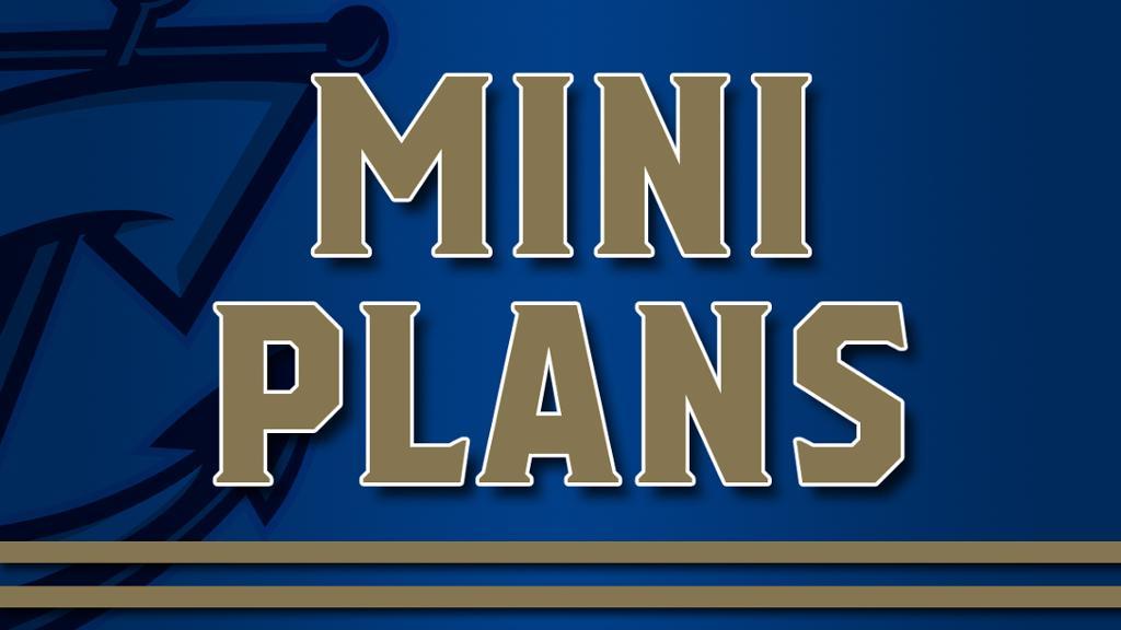 2020 Mini Plans