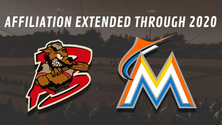 Muckdogs, Marlins extend affiliation agreement through 2020 season