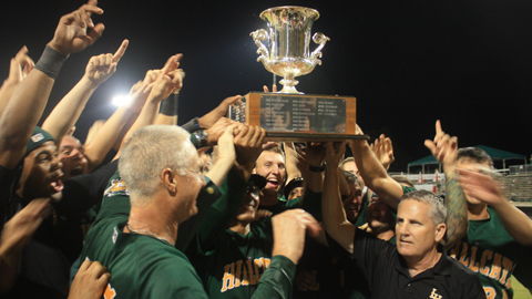 The Hillcats celebrate the seventh Mills Cup title in team history.