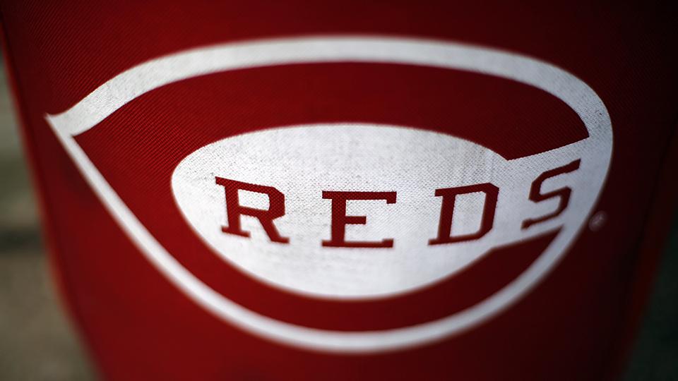 Reds' Capellan killed in car wreck   MiLB com News