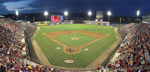 Mudcats Baseball in 2015