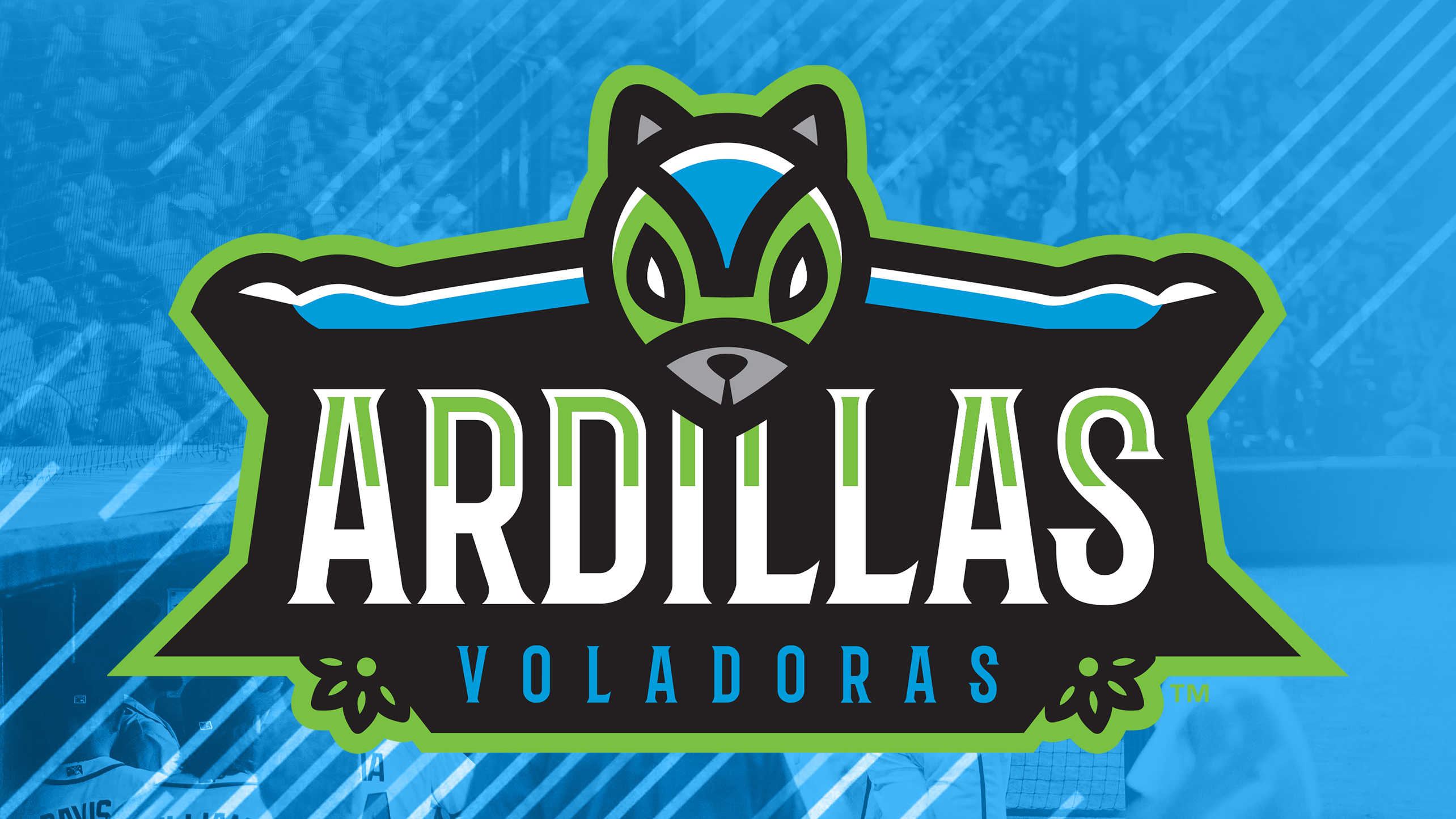 Richmond Flying Squirrels Schedule 2020 Flying Squirrels to become Ardillas Voladoras for Friday home
