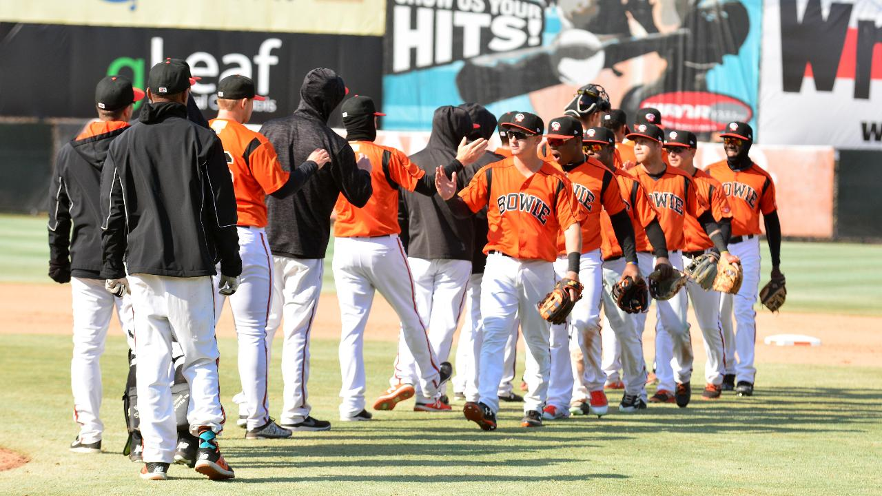 Image result for bowie baysox game