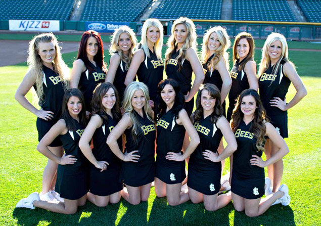 2013 Honey Bees