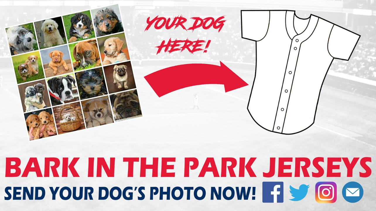 Bark in the Park Jerseys