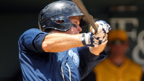 Mike Freeman hit .247 with 61 runs scored for Double-A Mobile this season.