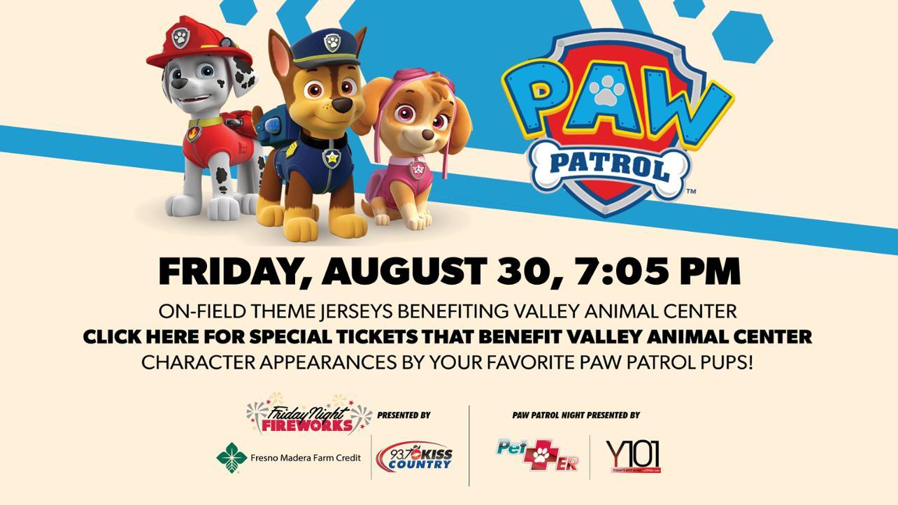 PAW Patrol Night