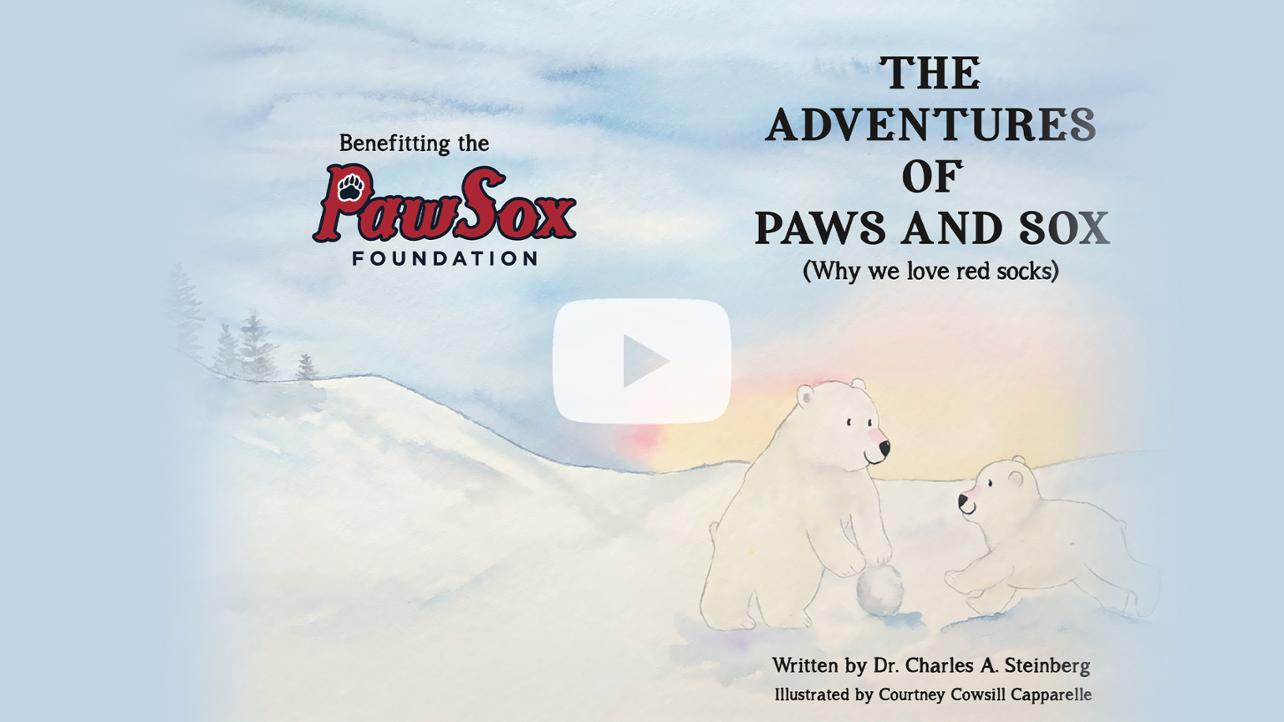 Adventures of Paws and Sox