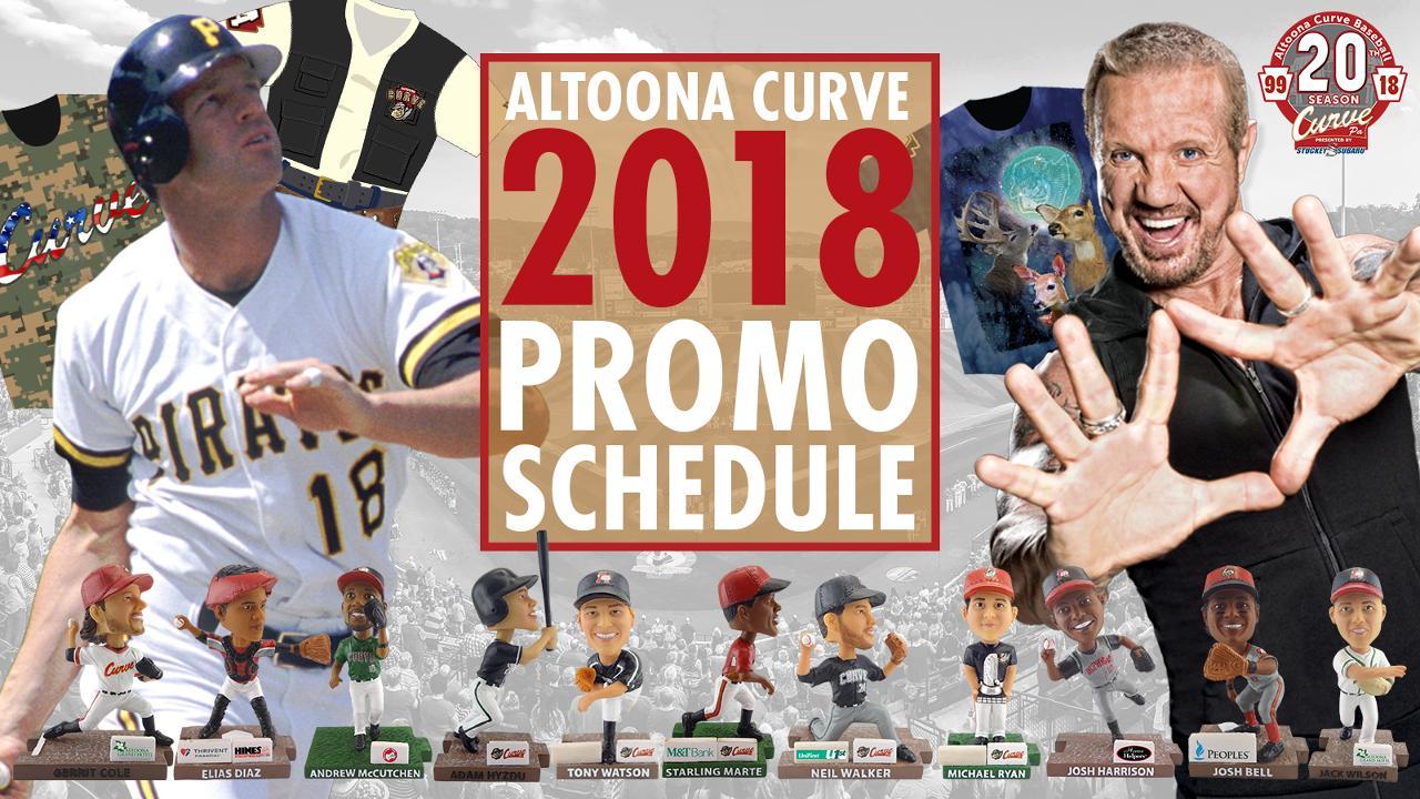 Altoona Curve MILB Baseball Team USA Sport Art Poster 19/'/' X 12/'/'