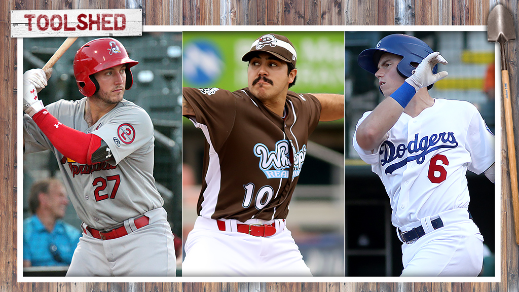 Toolshed: Spring invitees to follow in NL