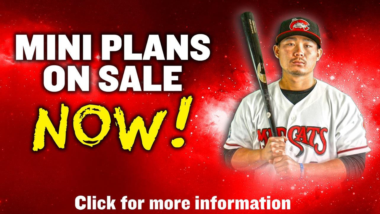 Mudcats Mini Plans Are Now Available!