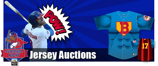 Bisons Supehero Auctions
