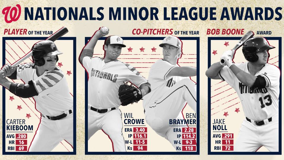 ee04fd07c35 2018 P-Nats Sweep Washington Nationals Minor League Awards