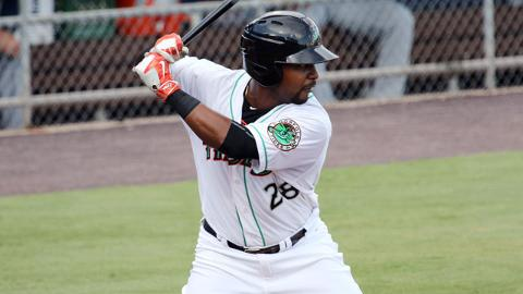 L.J. Hoes batted .242/.318/.331 with six homers in 102 games at Triple-A Norfolk last year.