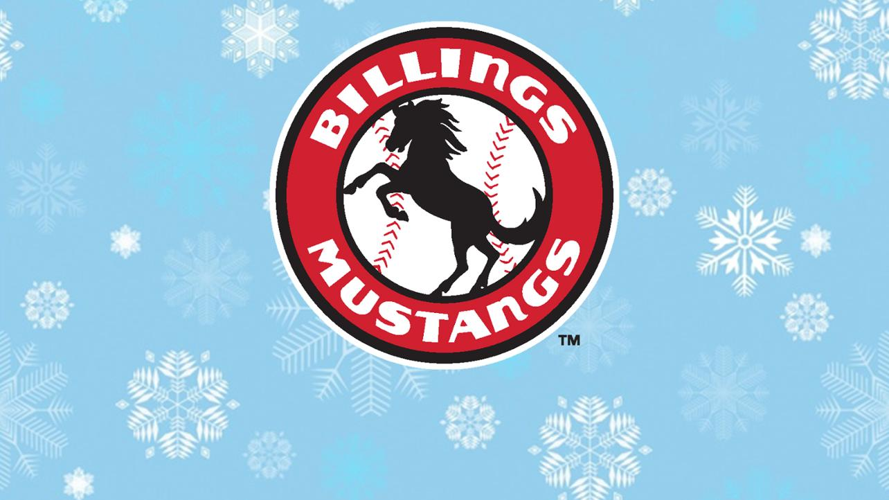Mustangs Gifts for Christmas