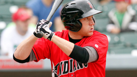 Goedert had 45 extra-base hits for Indy in 2013.