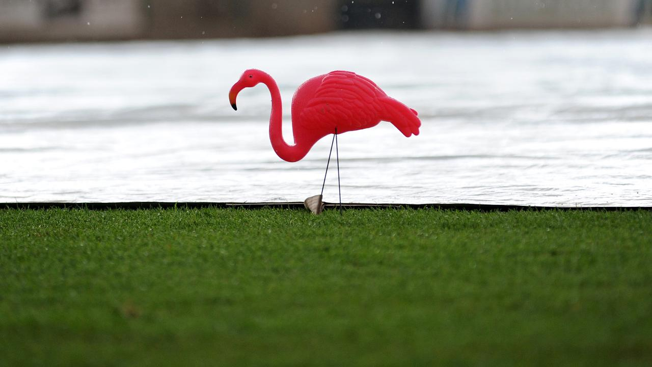 blueclaws power rained out on sunday blueclaws