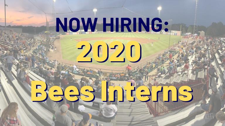Bees now seeking 2020 interns