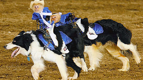 Get ready, Baseballtown! The Cowboy Monkey Rodeo is coming on June 18th.