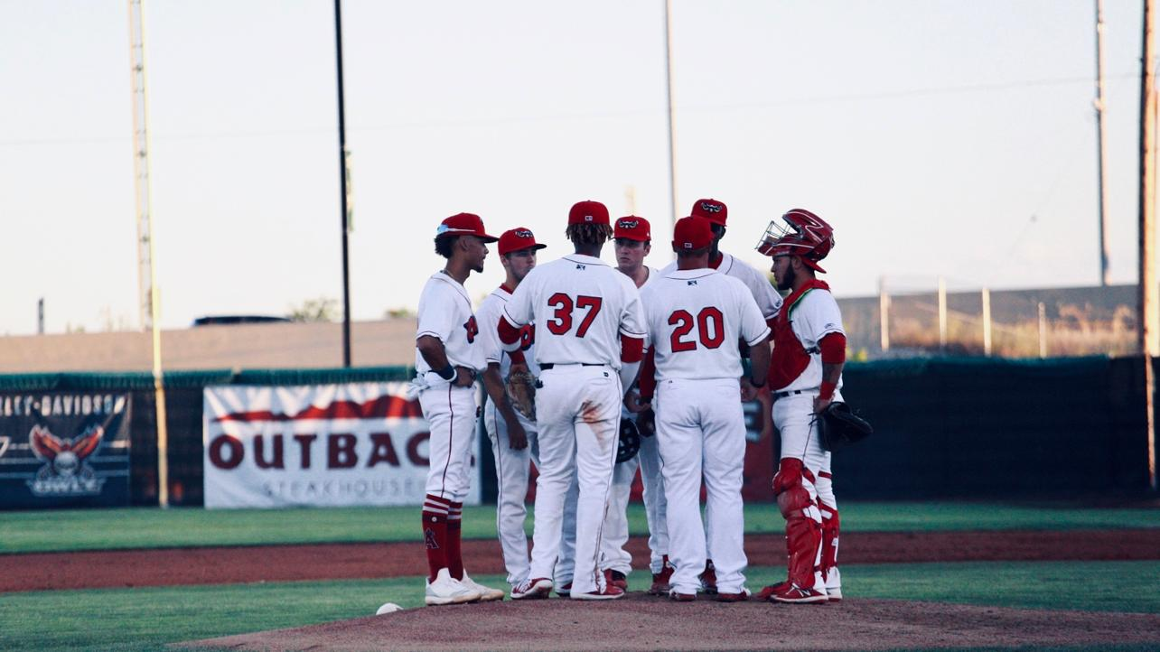 Owlz Stymied by Vibes in Finale