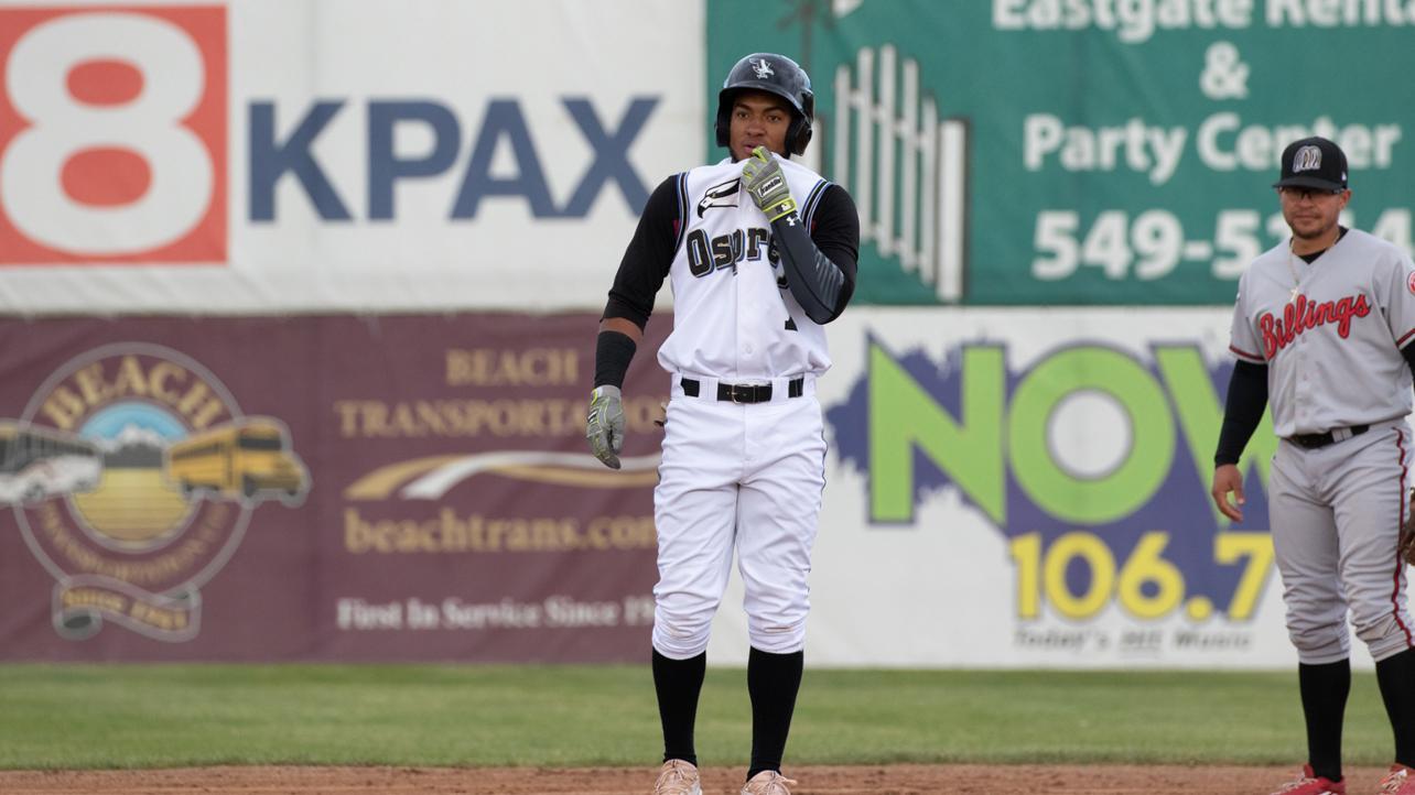 Osprey Comeback Falls Short Against Chukars