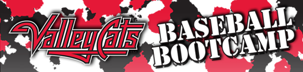 http://www.milb.com/assets/images/9/7/4/63572974/cuts/Baseball_Bootcamp_Web_Header_dclki8lf_9w4fy0jt.jpg