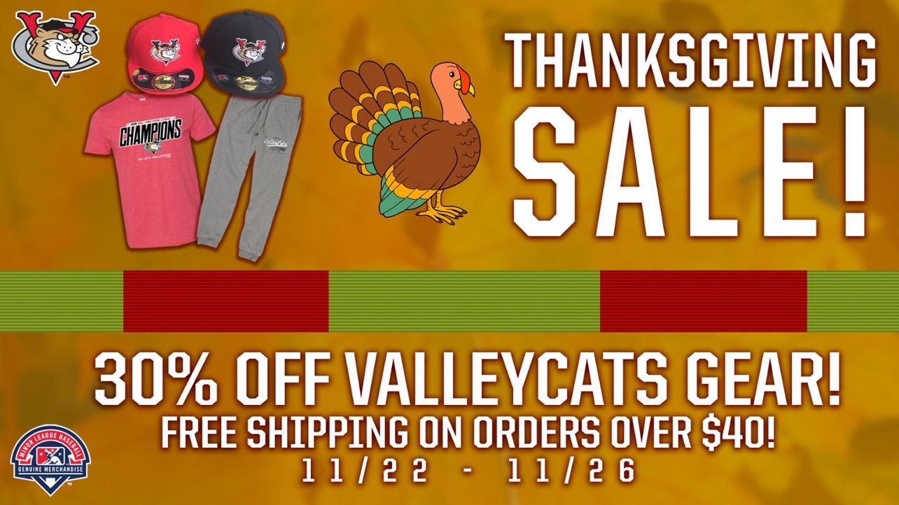Thanksgiving Sale Promo Panel