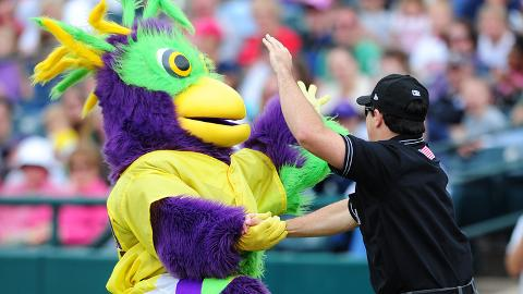"The iconic BirdZerk! dances with an ""umpire"" around the Minor Leagues."